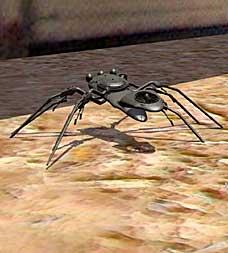 spidercreep