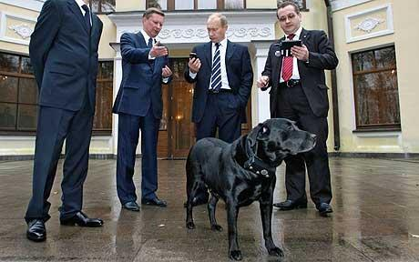 http://aftermathnews.files.wordpress.com/2008/10/vladimir-putin-gps-dog.jpg