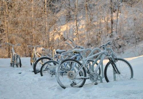 6T1_hibernatingbikes