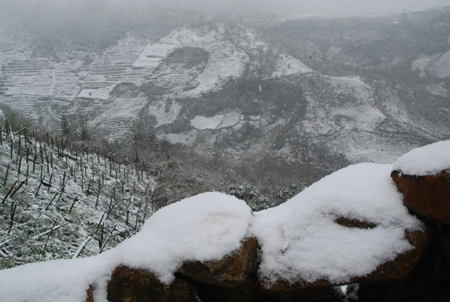 snow-has-covered-o-quy-ho-mountain-pass-in-sa-pa-district-of-lao-cai-province-since-the-beginning-of-the-year-photo-sggp-798895-images221380-o-quy-ho