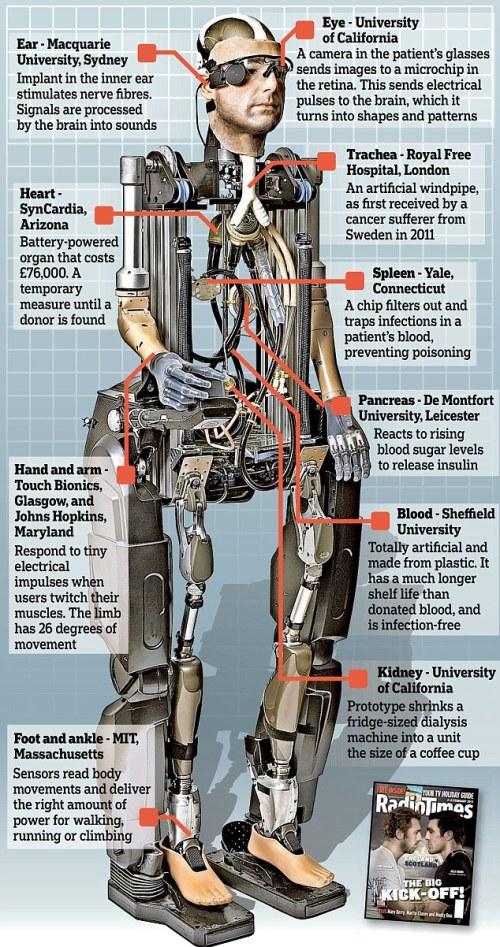 bionic man schematic