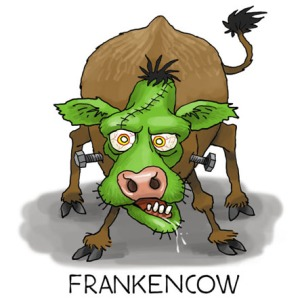 LON_FrankenCow