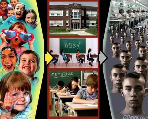 school_dees